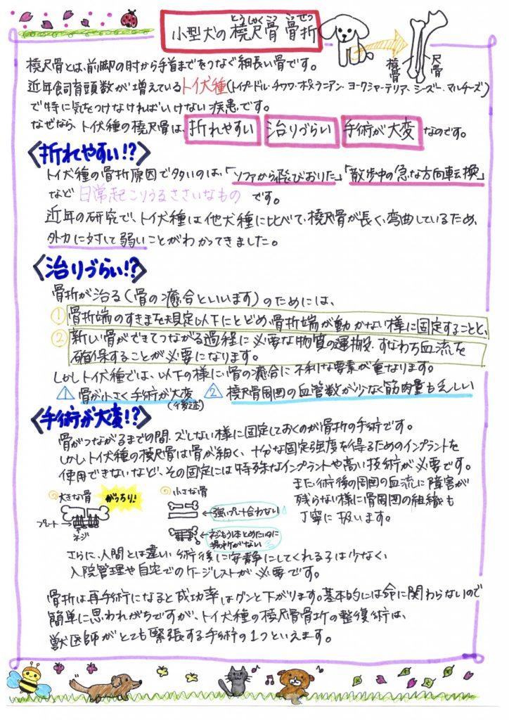 EPSON021-2
